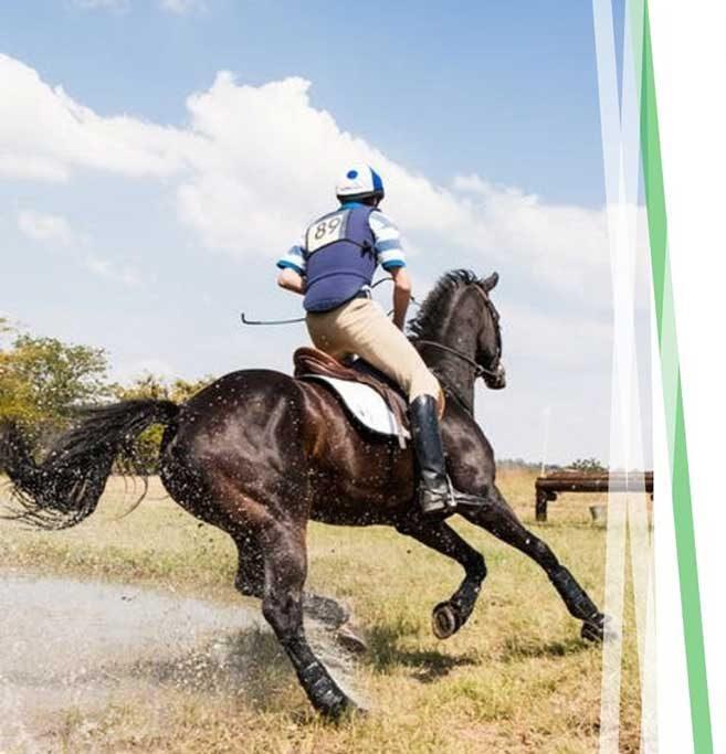 equestrian-life-insurance-img1-e1597930039865