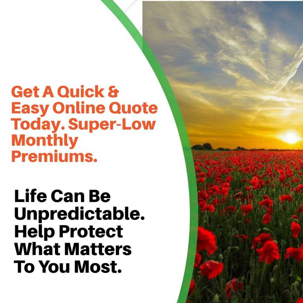 sun life life insurance reviews